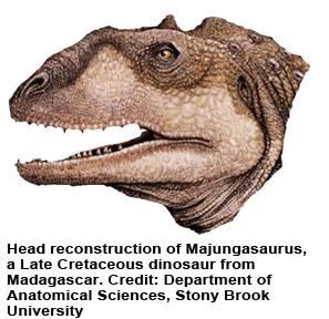 DinoFig2